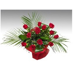 San Valentin 12 Rosas