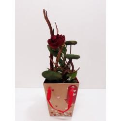 San Valentin caja 1 rosa