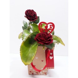San Valentin caja 2 rosas