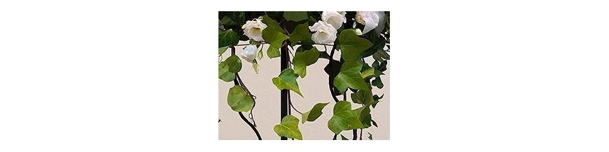Floristeria Aladino Alcoy Decoración Nupcial
